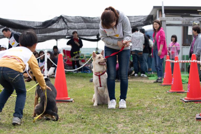 【愛知】犬の運動会&マルシェ